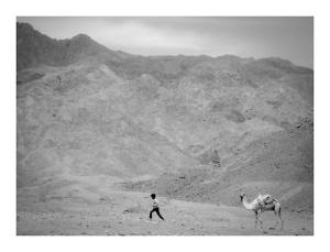 desert boy egypt