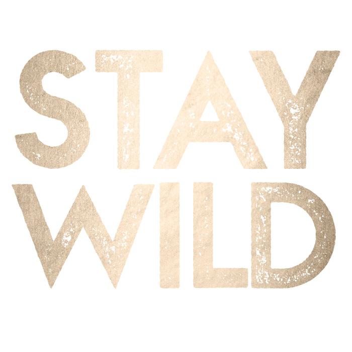 stay-wild-white-gold-quote-prints.jpg